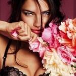 lingerie sexy pour saint valentin